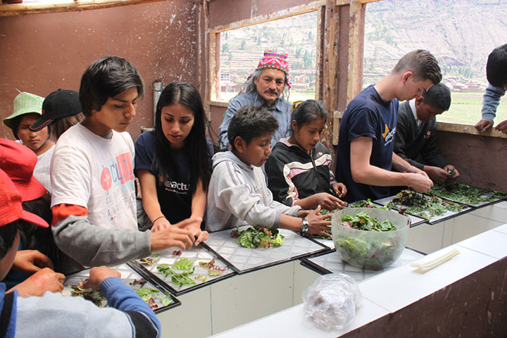 Students Sorting Produce